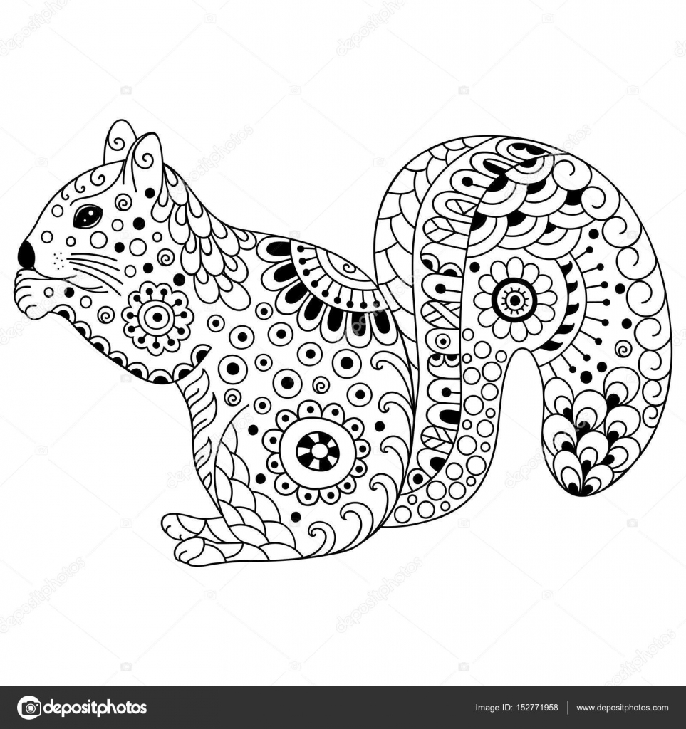Https Cz Depositphotos Com 152771958 Stock Illustration Doodle Stylized Squirrel Sketch For Html