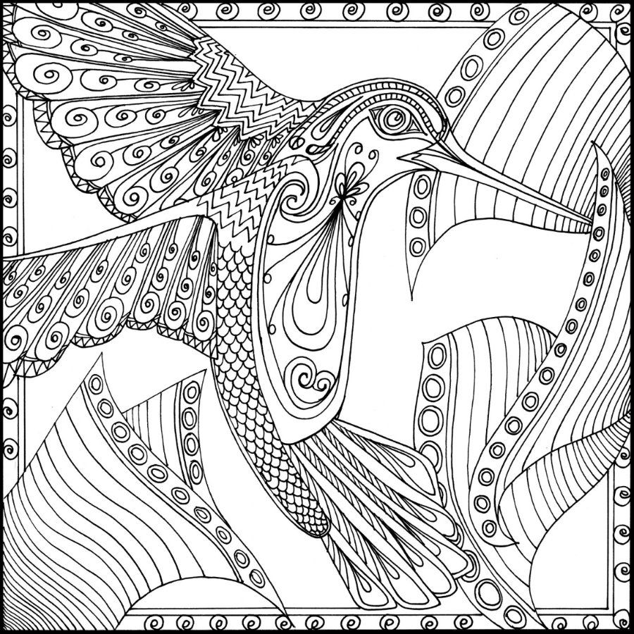 Pin On Adult Coloring Birds