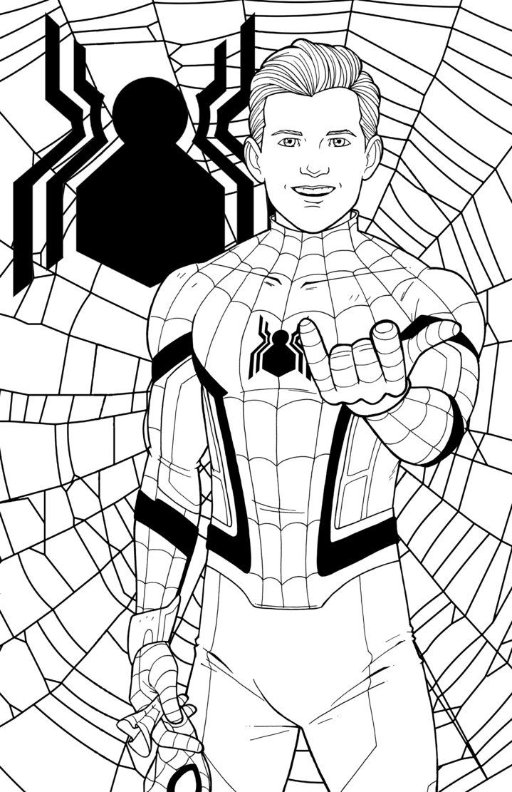 Pin On Lineart Spiders