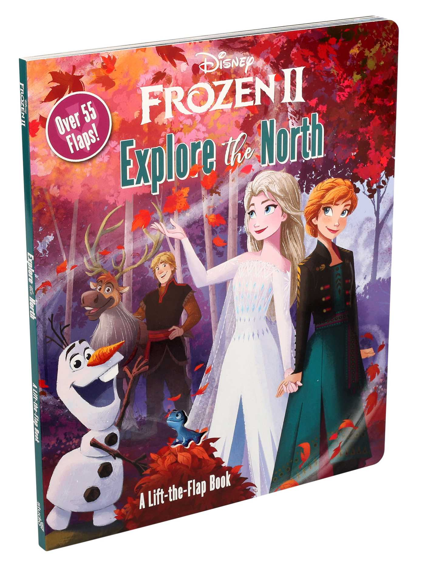 Disney Frozen 2 Explore The North By
