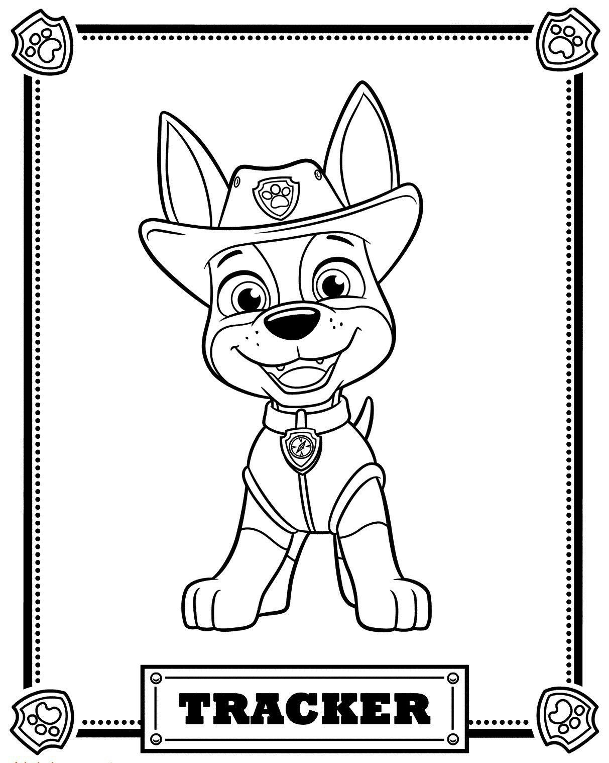 62 Pawpatrol Coloring Pages Ideas